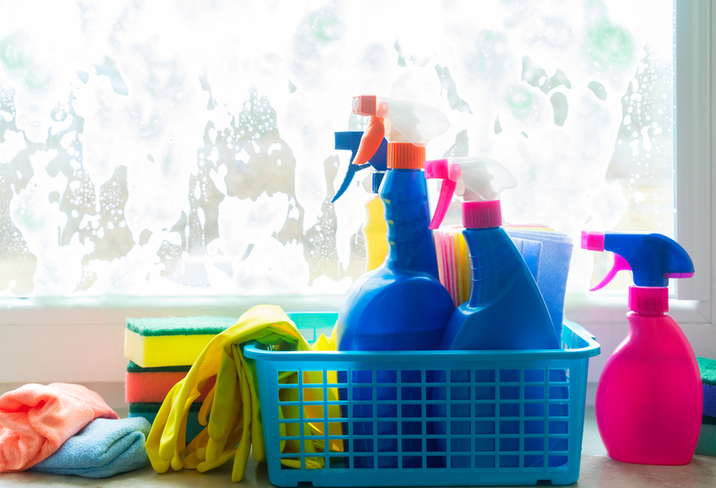 Spring Cleaning to Bite the Dust - Regency Cleaning - Cleaning Services in Calgary